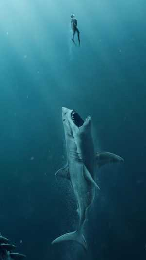 Shark Wallpaper